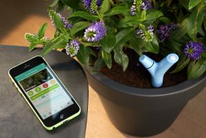 Parrot flower power sensore